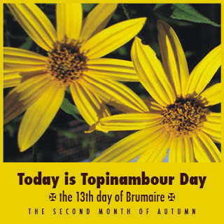 Today is 'Topinambour' Day, not November 1st